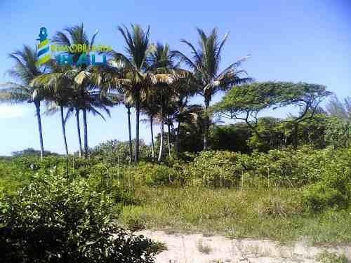 terreno comercial en venta tamiahua