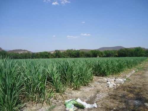 terreno comercial en venta tehuixtla