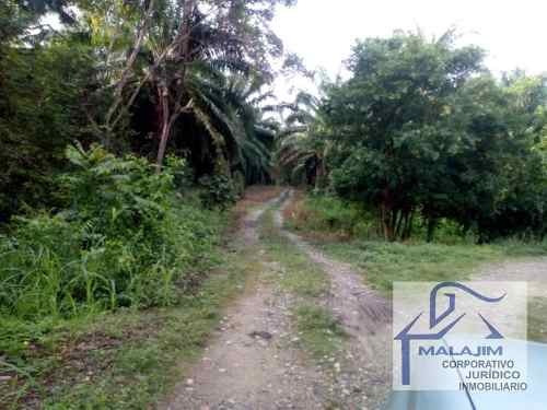 terreno comercial en venta villa comaltitlan