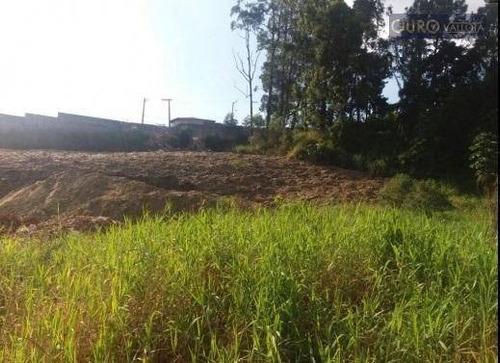 terreno comercial para locação, 36.657m²,  e construído 9.567,90. jardim dos pimentas, guarulhos. te180903v - te0098