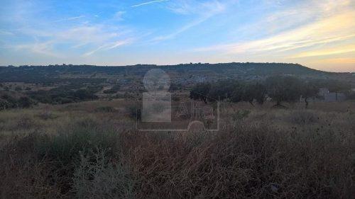 terreno comercial sobre fray junipero por antea