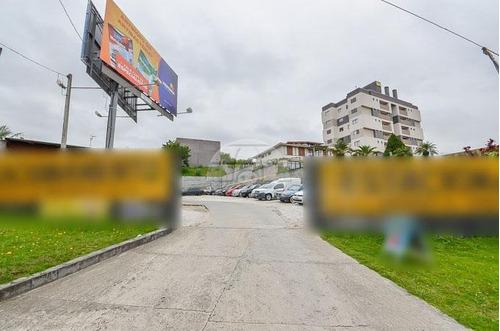 terreno - comercial/residencial - 131345