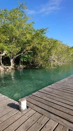 terreno con 20 metros de laguna de  bacalar q. roo