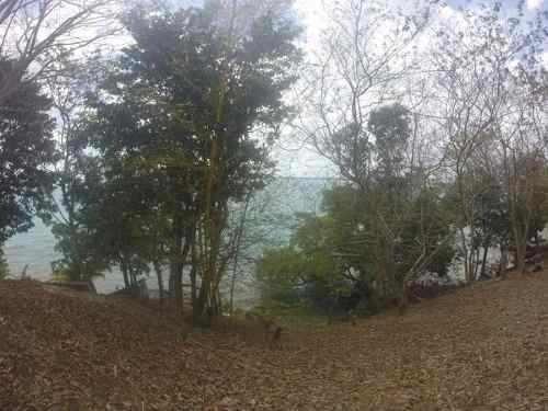 terreno con frente de laguna y a orilla de carretera en baca