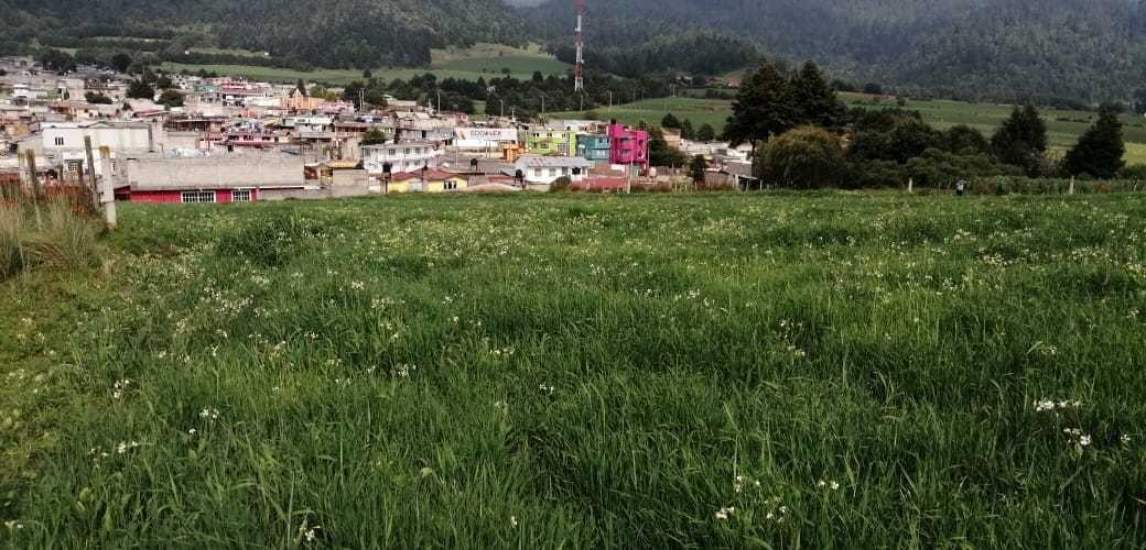 terreno con local comercial, a pie de carretera.