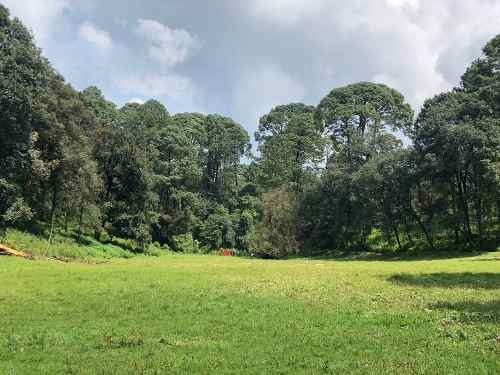 terreno con manantial cerro gordo