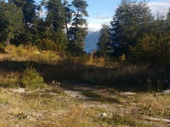 terreno con vista al lago en villa la angostura