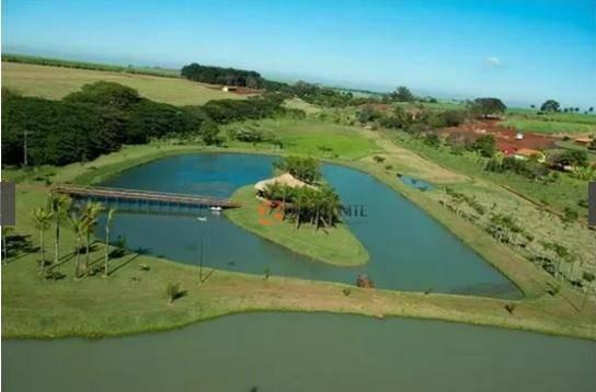 terreno - condomínio residencial santa maria - ribeirão preto - te0136