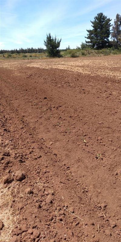 terreno construccion  en venta en chillán