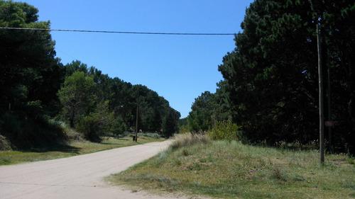 terreno costa del este excelente ubicacion 502 m2 con pinos