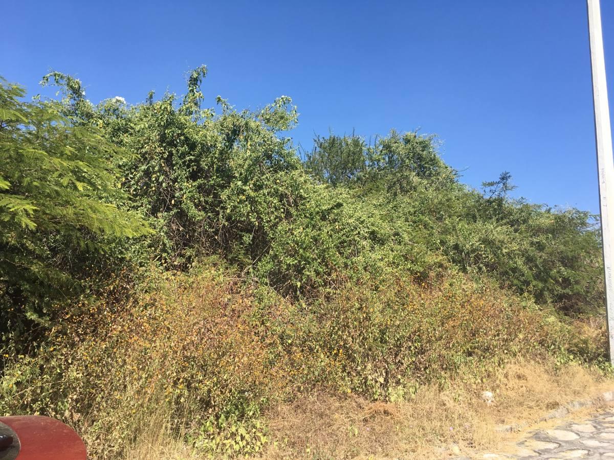 terreno de 1000m2 en villa dorada, cuautla, morelos a tratar