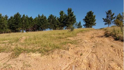 terreno de 1.000m2 pronto para construir
