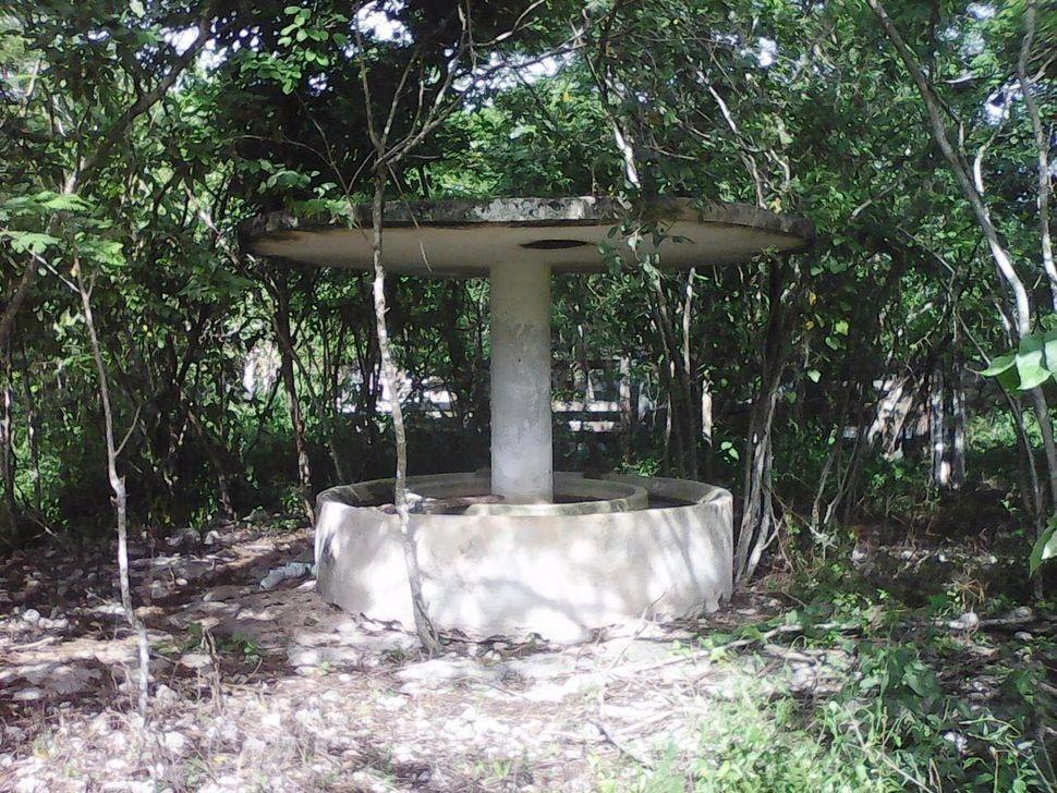 terreno de 110 has, finca kindzib, cansahcab yucatan
