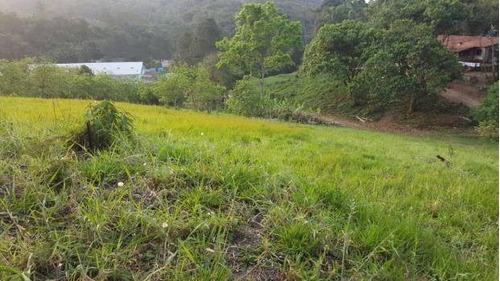 terreno de 1300m², r$40.000,00. 036