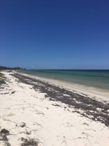 terreno de 1,887 m2 en la playa en venta en puerto morelos c1769