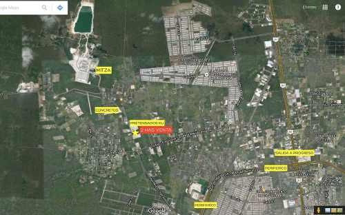 terreno de 2 has en dzitya, con 100m de frente carretera, todos los servicios.