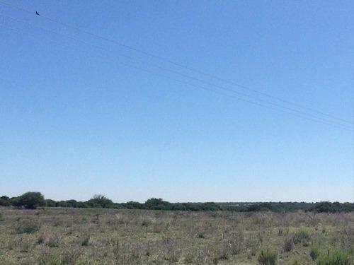 terreno de 2 hectáreas en venta