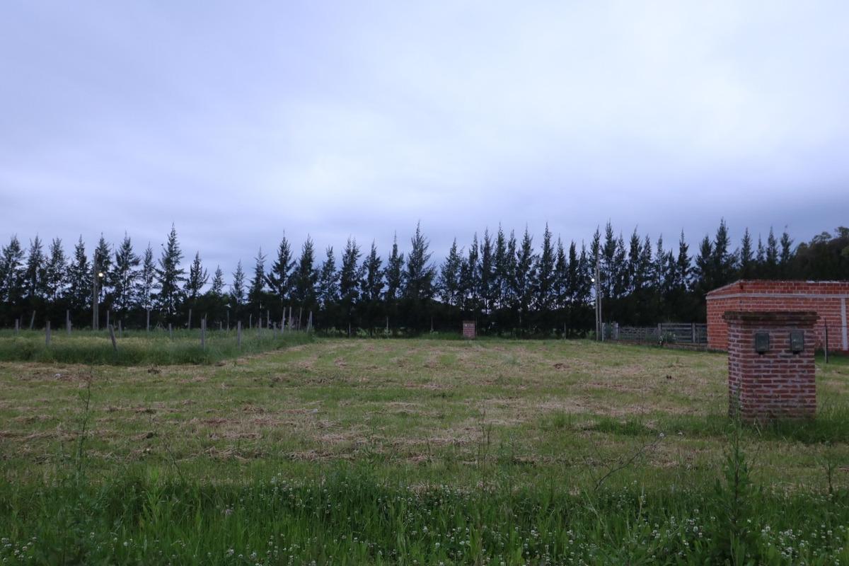 terreno de 300 m2 en venta - barrio cerro chico