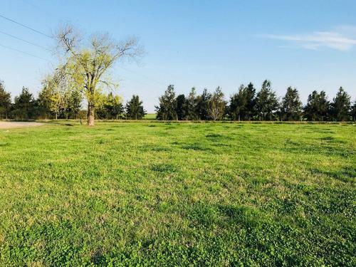 terreno de 300 mts2 en ricardone - tranquilidad asegurada