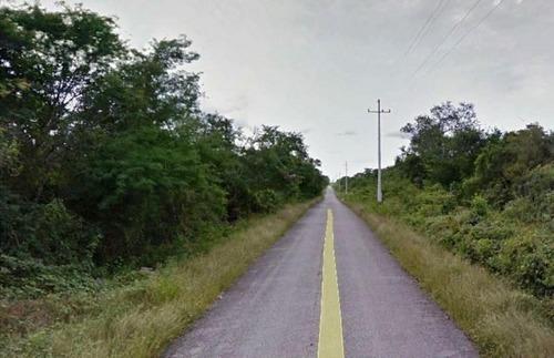 terreno de 378 has en venta a 15 kms de mérida - tzacalá