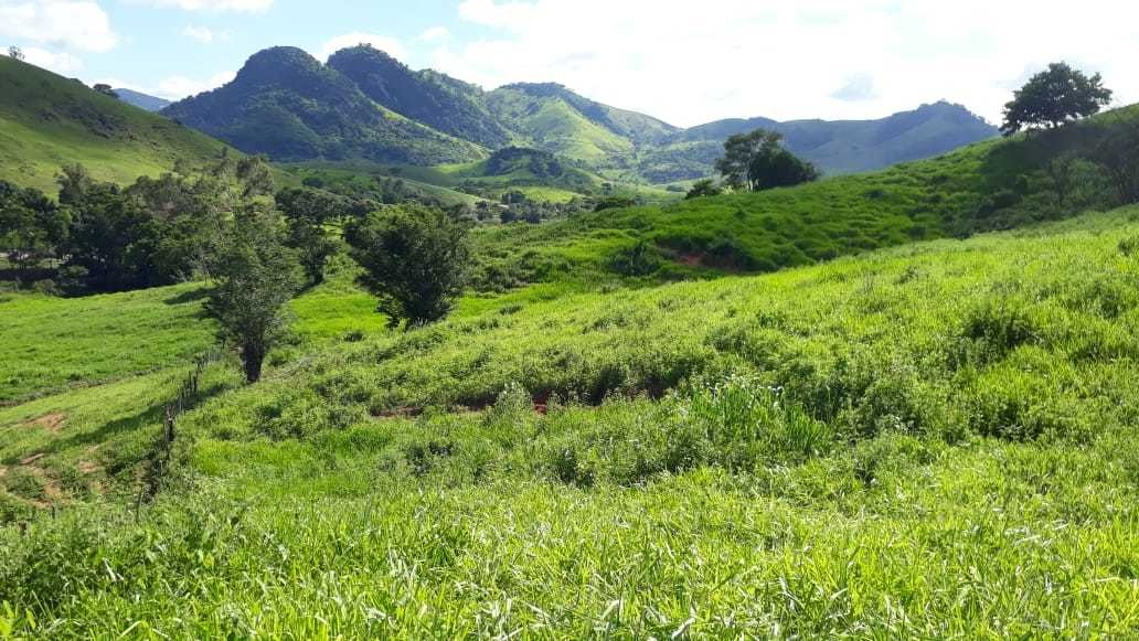 terreno de 4 hectares
