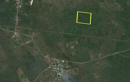 terreno de 45 hectáreas en seyé, yucatán