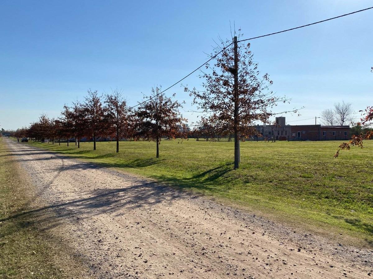 terreno de 456 m2 - barrio las casuarinas ibarlucea