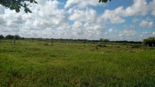terreno de 474 ha ideal para granja paneles solares o rancho