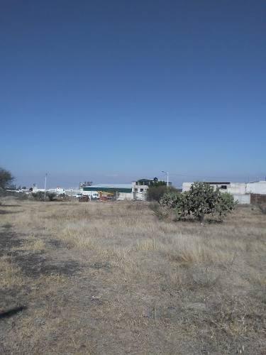 terreno de 5000 m2 en renta por conin, qro