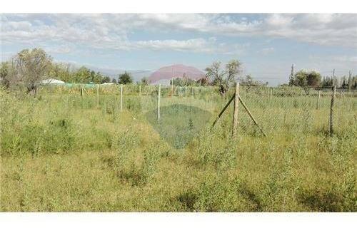 terreno de 500mts en colonia segovia gllen
