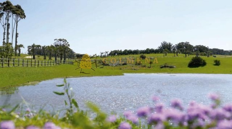 terreno de 5209 m2 en laguna states manantiales-ref:1917