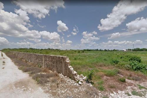 terreno de 6 hectáreas los sauces en cholul, yucatán