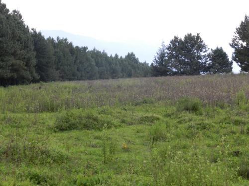 terreno de 7 hectáreas en valle de bravo, mesa de dolores
