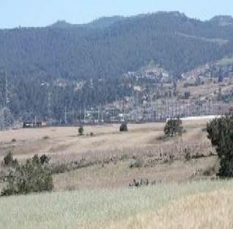 terreno de 7 hectáreas san lorenso sayula hidalgo  cuautepe