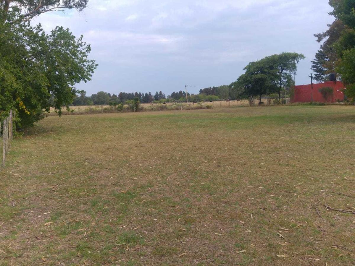 terreno de 8 lotes en ruta 2 km 63200 la plata