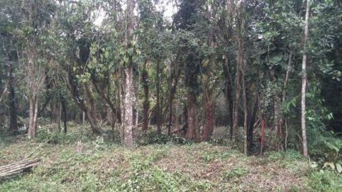 terreno de chácara á venda,medindo 5200m²,em itanhaém-sp