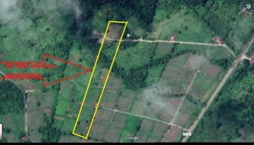 terreno de chácara com 25 mil m² - itanhaém 6247 | p.c.x