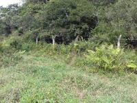 terreno de chácara em itanhaém 3029 e