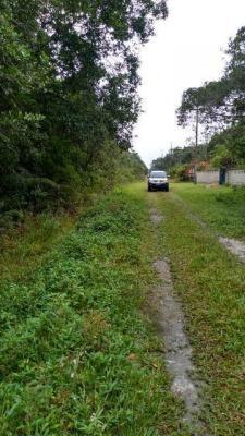 terreno de chácara em itanhaém, com 2400 m², confira!