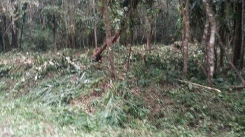 terreno de chácara em itanhaém com moradores próximos 2340 e