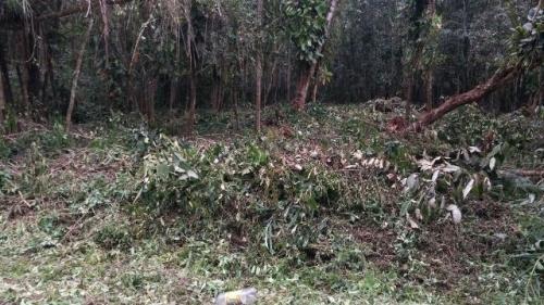 terreno de chácara medindo 5200m²,em itanhaém/sp