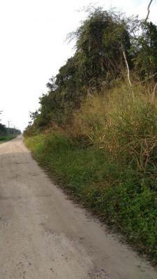 terreno de chácara no balneário tupy, em itanhaém.