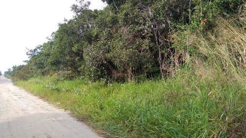 terreno de chácara no balneário tupy, em itanhaém - ref 4400