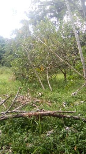 terreno de chácara plano no bairro bopiranga, em itanhaém