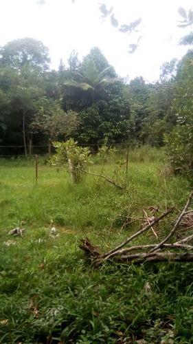 terreno de chácara plano no bairro bopiranga ref 3951