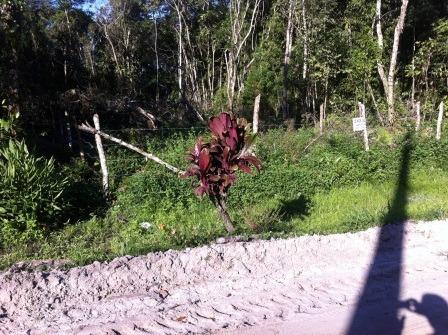 terreno de chácara sem construção em itanhaém/sp