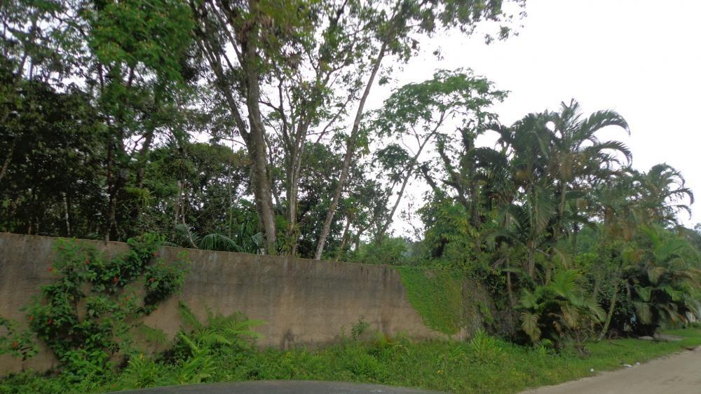 terreno de chácara à venda murado em itanhaém. ref.443 /184