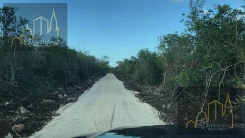 terreno de inversion en carretera mérida-progreso