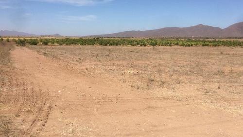 terreno de riego barato cerca a guamuchil