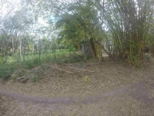 terreno disponible en mancha urbana en bacalar a 100 m